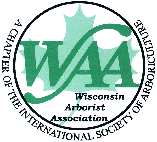 WAA Color Logo