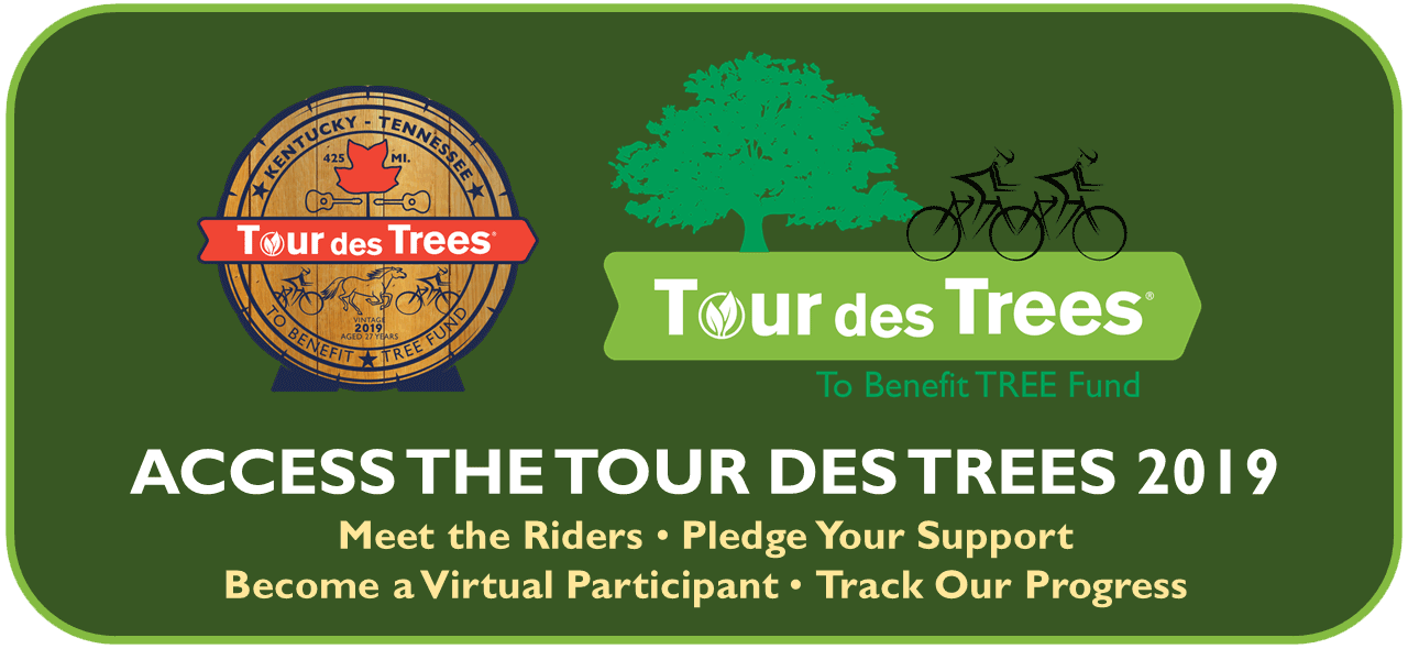 Tour Des Trees Fetaured Image