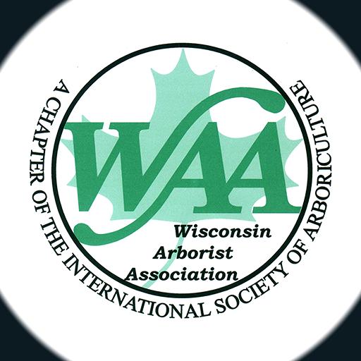 Waa Logo Gradient 3