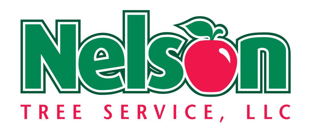 NTS Logo(LLC)