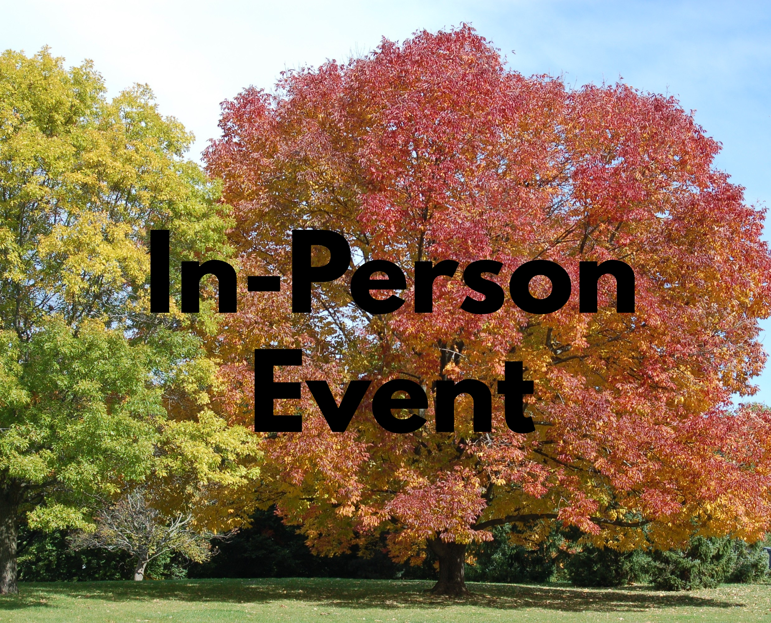 In Person Pic